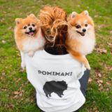 Blogger    Pompomilicious Pompom - Mascotas
